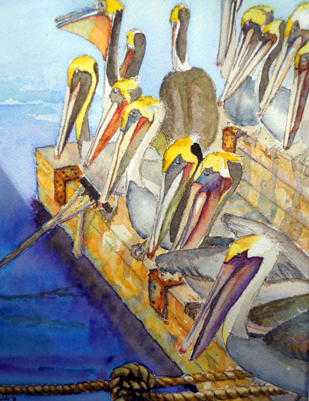 Santa Barbara Harbor Pelicans