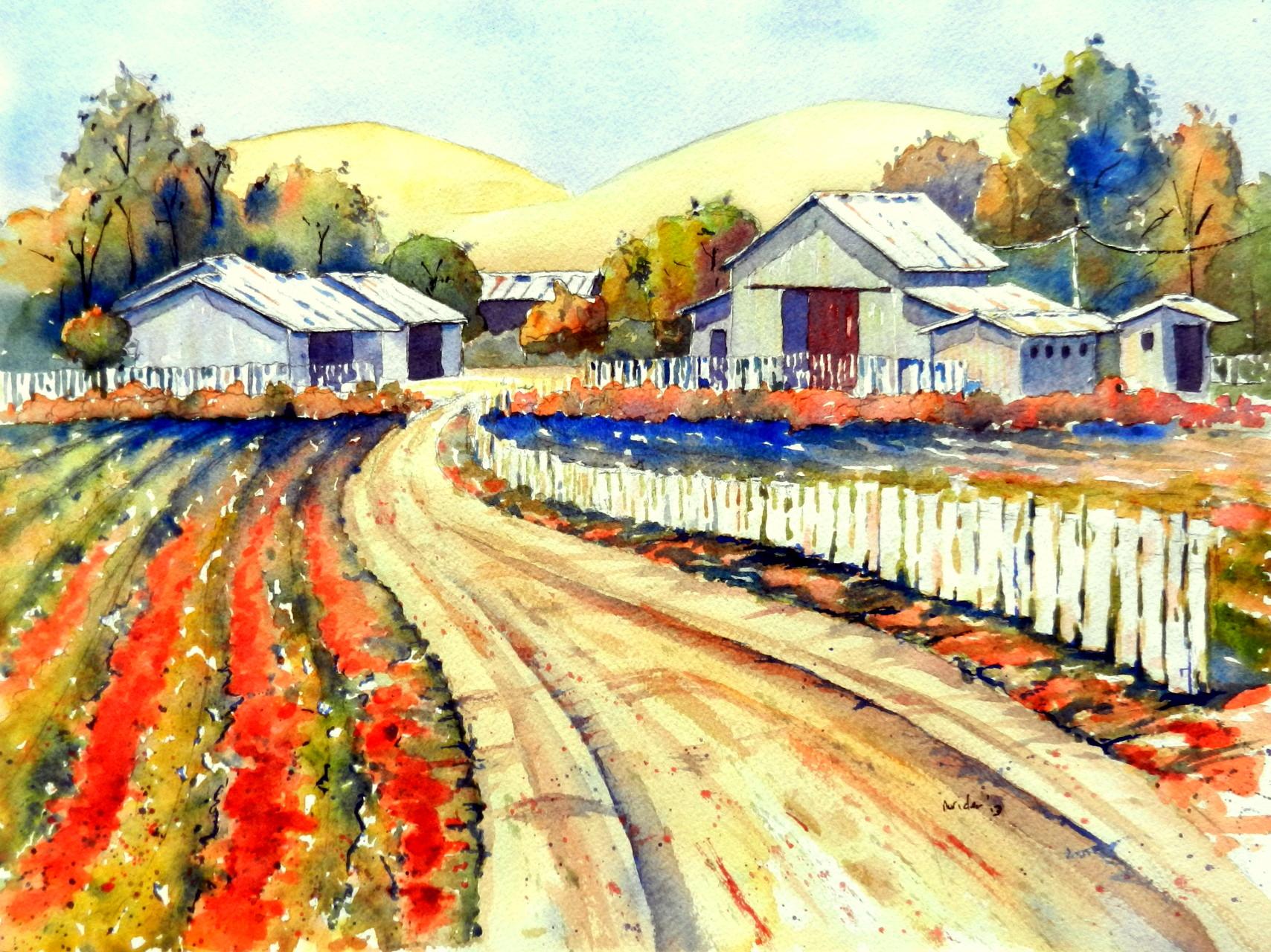 Santa Ynez Barns